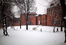 Zima w Parku Starego Browaru