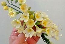 Fondant and gumpaste flowers.