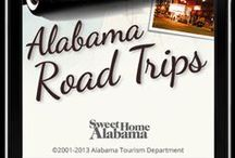 Outdoor Adventures in Alabama / Check out this board for ideas on things to do outdoors in Alabama!  / by UAB GSA