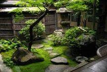Kioto (+Tokio), Japani 2010