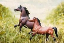Breyer Pferde (Breyer horses)