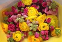 flowers for every occasion. / bouquets and arrangements for everyday occasions.