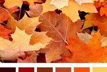 Fall ♡