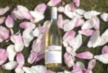 What We Do: Garganega Wines - Soave Classico, Sparkling and Passito / Soave Classico Wines, Monteforte d'Alpone, Verona, Italy