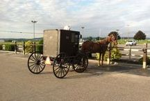 Lancaster County Pennsylvania / Things you can see, fun things to do and places to stay while visiting Amish Country in Lancaster Pennsylvania and Lancaster County.