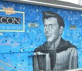 Wall Murals and Street Art / Wall Murals and Outdoor Street Art in North America. Including Wyland Whaling Walls, Wall Murals by David Dunleavy, Beilings and others.