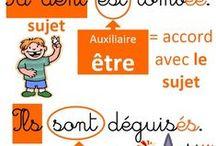 Ecole_Français_Etude de la langue