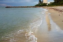 Florida scenes (Sunshine State) / by Doreen Conley