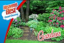 Gardening / Our carpet cleaning process will never leave a soapy residue. Your carpet will be fresh and clean. Our carpet cleaning process will allow your carpet to DRY IN 1 HOUR. This means it will leave you time to work in the garden. Give us a call today. 734-692-8990