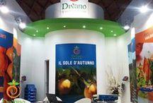 Macfrut Rimini 2015 / Una raccolta di foto dalla fiera Macfrut di Rimini dove abbiamo partecipato con il nostro stand aziendale.