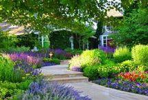 ogrody i rośliny