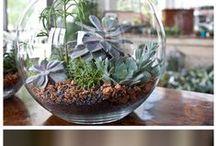 jardines / decoración de jardín