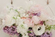 || Wed - Flowers || / - Beautiful blooms for your wedding day -