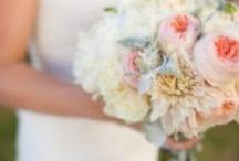 Wedding / So pretty