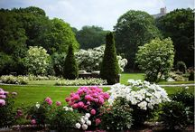 Gardens and Grandeur / Some inspirations for the Theta Charity Antique 2013 theme.