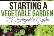 gardens. / Vegetable and flower gardens for the new house! / by Chrissy Fromm
