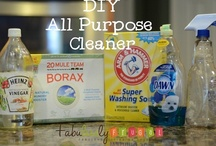 Cleaning Tips and Recipes