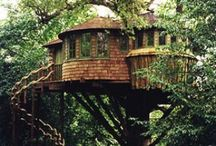 Tree Houses / by T. Y.