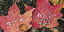 Weddings :: Fall in Love / Crisp air, warm drinks, pumpkin everything ... that's what Fall weddings are made of.