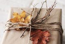 Fall Favorites / by Debra Ackerbloom