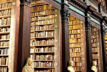 Book sanctuary / Big public and private book collections