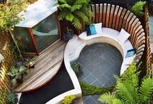 Roof Garden (azoteas verdes)