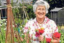 Gardening Agony Aunt / Our green guru Helen Yemm solves your thorny problems