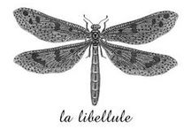 Be a libeLLule