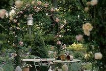 gardens and flowers / giardini, natrura, fiori