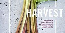 Harvest: Unexpected Projects Using 47 Extraordinary Garden Plants / Harvest is a beautifully photographed guide, written by Homestead's Stefani Bittner and Alethea Harampolis, to growing, harvesting, and utilizing 47 unexpected garden plants to make organic pantry staples, fragrances, floral arrangements, beverages, cocktails, beauty products, and more.