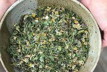 Grow TEA / gardening, tea gardens, edible flowers, herbs