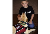 Pawsitive Autism Service Dog Solutions