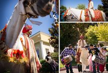 Indian Weddings / Hackney Horse & Carriage offers white riding horses decorated traditionally for Indian Weddings!