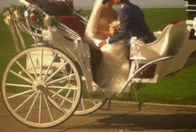 Weddings / Love and marriage great together with Hackney Horse & Carriage!