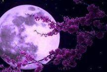 Hold - Luna