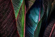 colours creativity