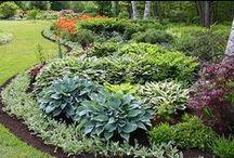 Coastal Maine Gardens / Coastal Maine Botanicals. We look for inspiration for our grounds everywhere we go.