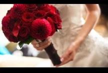 Matrimoni e Cerimonie / Weddings and Ceremonies  / Banqueting per eventi privati: matrimoni, cene di Gala, addio al nubilato, addio al celibato, compleanno, laurea, anniversari, battesimi, comunioni, cresime. Per i vostri momenti importanti, da festeggiare con familiari ed amici, il Jazz Hotel Olbia e il Bacchus Ristorante sono la cornice ideale per gli eventi a cui tenete di più. www.jazzhotel.it