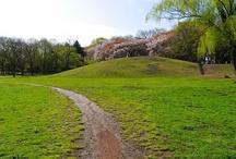 Musashino Park / 武蔵野公園 / http://musashinoparks.com/kouen/musasino/