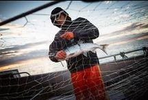 Sockeye Season with Chris Miller / A photo journal from the Bristol Bay Sockeye Season; photos taken by Chris Miller.