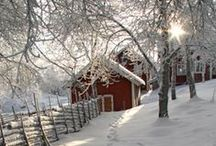 Snow Time! ❄⛄