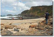 Beachcombing / by David Dittler