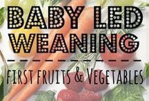 Baby Led Weaning / Tips, tricks and how-to's for introducing your little one to solids using the baby led weaning method.