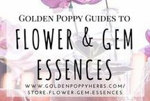 Flower & Gem Essences / Guides to using Flower & Gem Essences from Golden Poppy Herbal Apothecary / by Golden Poppy Herbal Apothecary