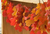 autumn musings / by Kim Farmer