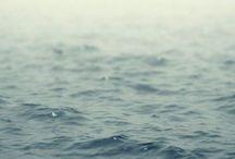 by the sea / by Kim Farmer