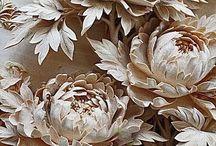 carving inspiration / by Kim Farmer