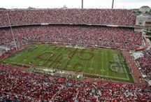 Buckeye Pride / Every day is a great day to be an Ohioan.