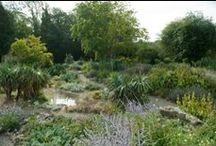 Rock Gardens / Doddington Place Gardens has a recently restored English Edwardian rock garden.  Follow board for news of rock gardens everywhere.