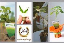 X+ Dodatnia Siła / O ekologii i ochronie Naszej Planety